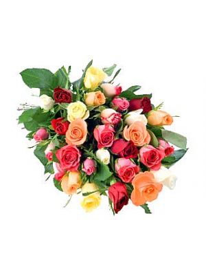 Mixed Bunch of Roses
